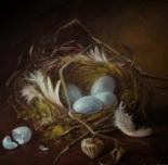nest_with_sand_cherry_pod_feathers_moss_blue_eggs__birds__animals__18d5ce632ba59479c2eb4ee51f8497e7