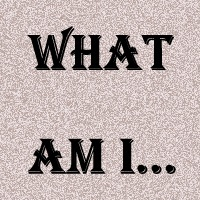 what am i...